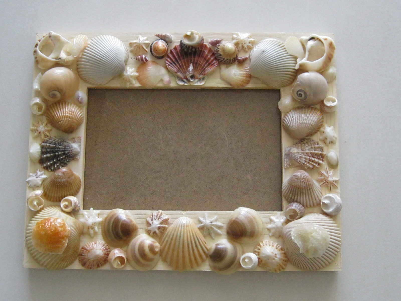 make your own shell art   everywhere