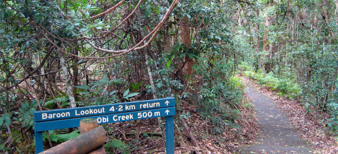 The start of the walk to Flat Rock from Baroon Pocket