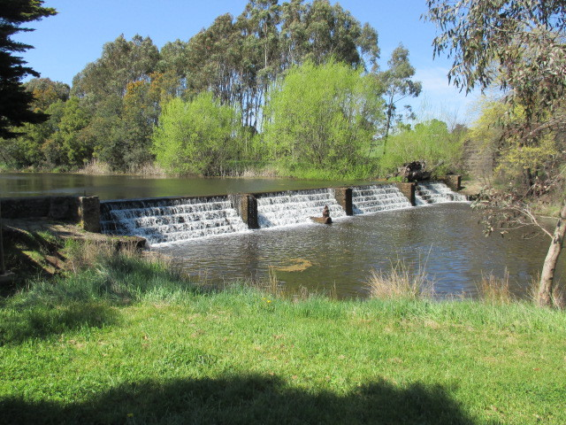 campaspe river walk