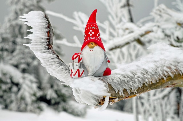 Christmas at The Ginger Factory, meet Santa, have your photo taken with Santa, Santa will read you a story, ride Moreton, 'Go Overboard' with a voyage around the world, Factory Tour, live bee show, Ginger Cafe, decorate gingerbread trees and gingerbread men, school holiday activity