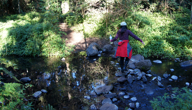 It is possible to keep your feet dry on every creek crossing with a bit of rock hopping