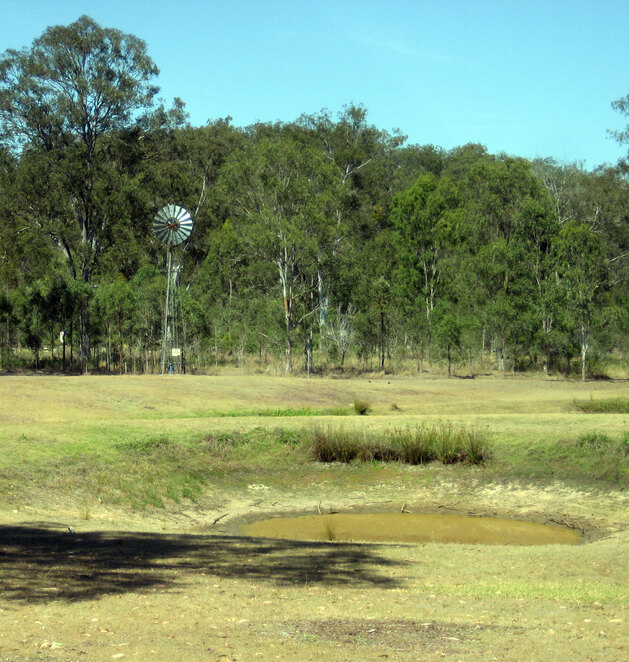 Harding's Paddock is a great place to camp in Ipswich