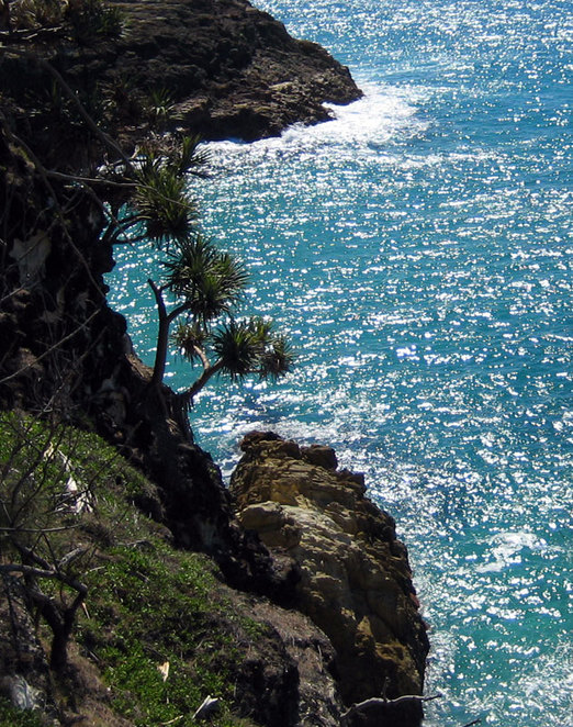 The cliffs on the gorges walk on North Stradbroke Island