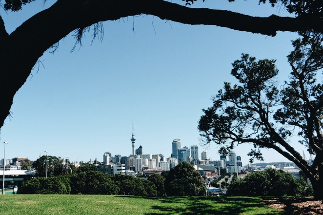 parnell rose gardens, auckland, dove myer robinson park, fred ambler lookout, flowers