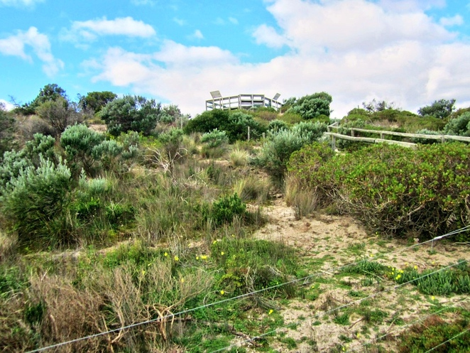 tennyson, tennyson dunes, tennyson dunes group, estcourt house, coastal path, west lakes, dune system, warrawee, grange, observation deck