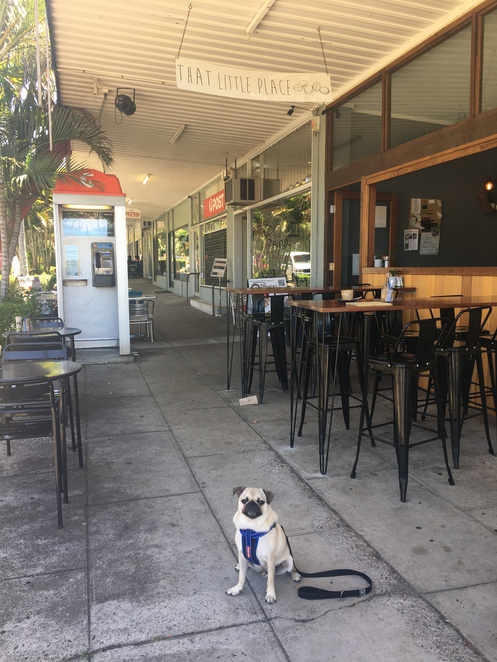 that little place, cafe, restaurant, mount gravatt east, mt gravatt east, brunch, breakfast, dog friendly, coffee, lunch, kid friendly, brisbane, southern suburbs, cakes, friendly service