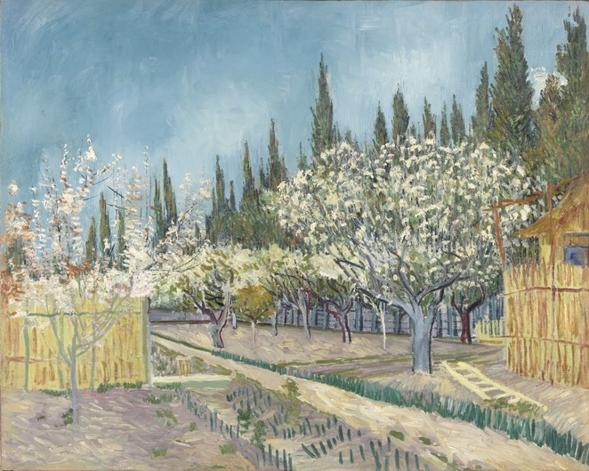 Vincent Van Gogh Orchard, Of Wheat Fields and Clouded Skies, Sharmill Films, Article by Jade Jackson