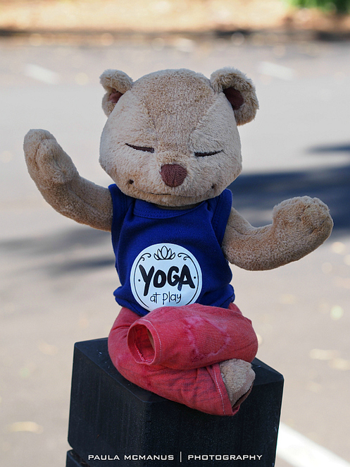 yoga pilates meditation