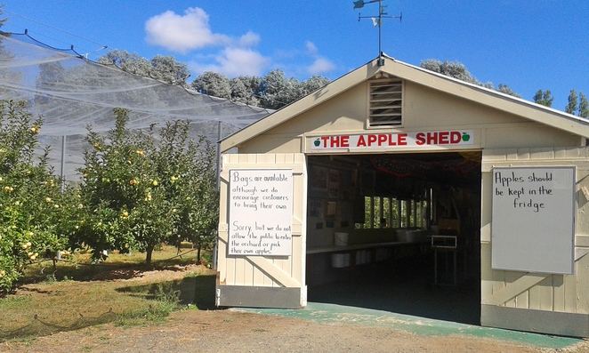 beltana grange orchard, apples, canberra, pialligo, farms, canberra airport, ACT,