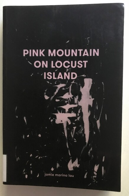 books, authors, literary, weekend reads, free, pink mountain on locust island, jamie marina lau