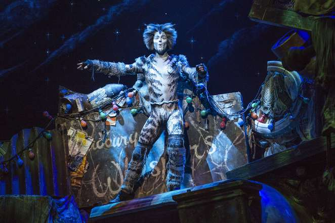 Cats The Musical Perth Crown theatre