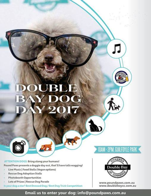 double bay dog day, 2017