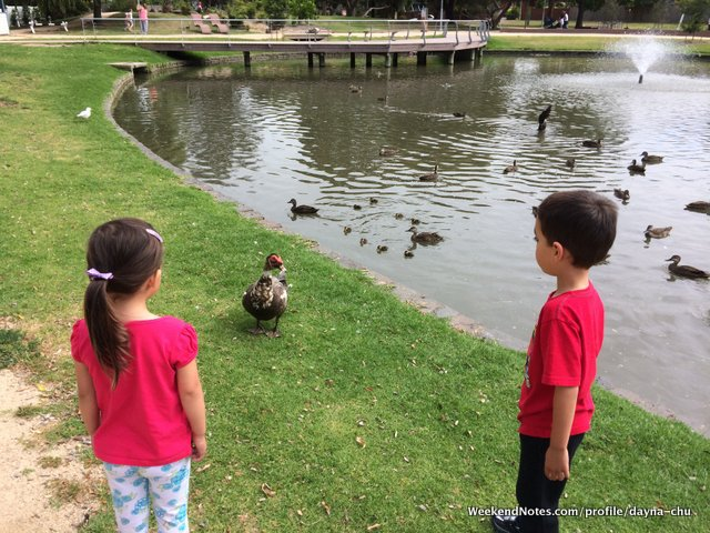 Where are the best fishing holes for kids in melbourne for Best fishing rod for kids