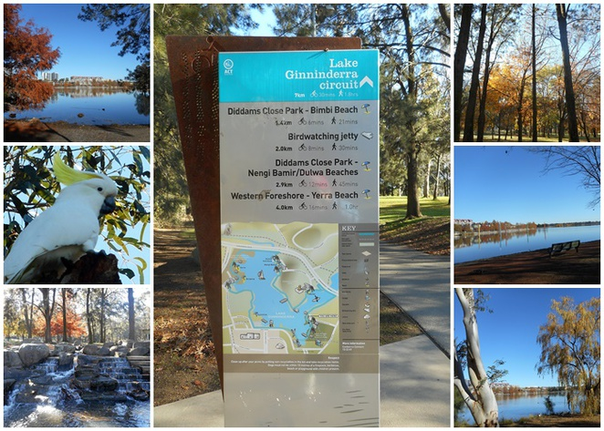 lake ginninderra, walks, paths, john knight memorial park, BBQ areas, playgrounds, parties, weekends, belconnen,