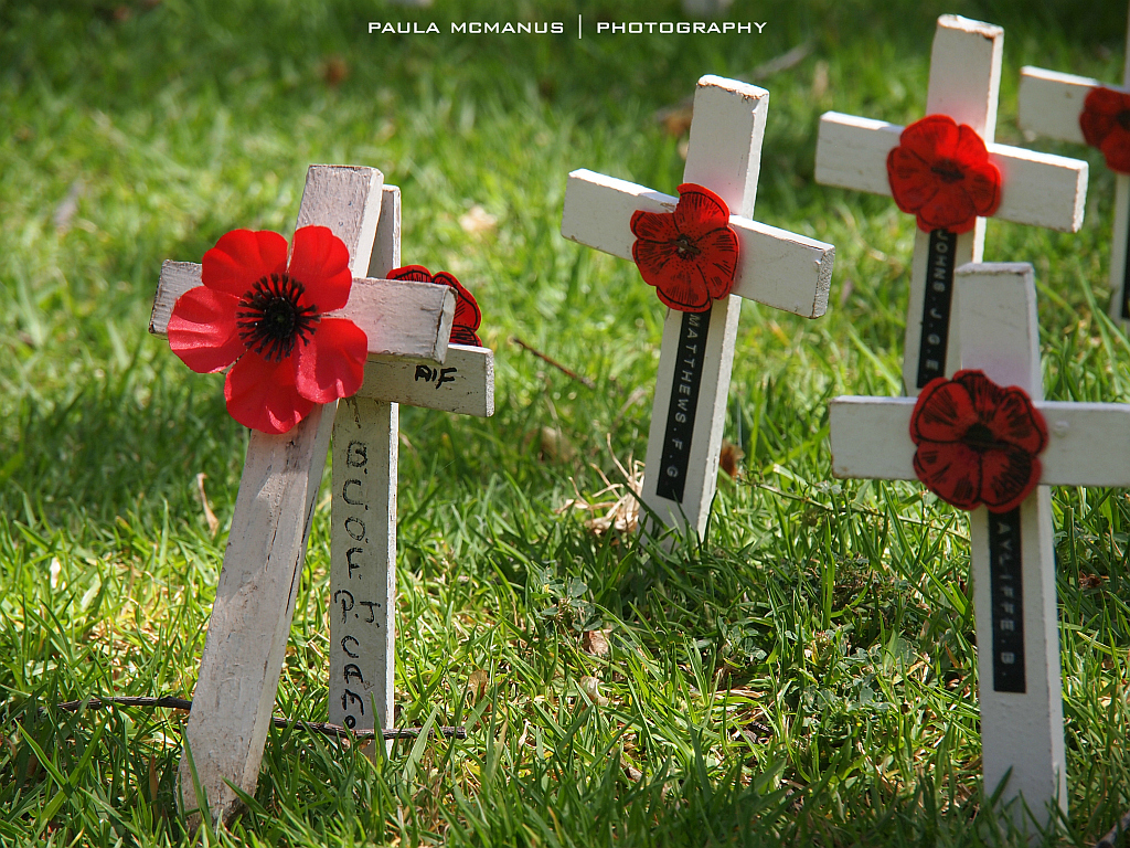 rememberance day Remembrance day in vietnam honors people who died or were wounded during the vietnam war or other armed conflicts.