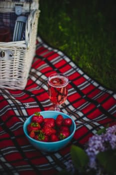 Valentine's Day, picnic, romance, hamper, outdoors, Mount Lofty Botanic Gardens, Mt Lofty Botanic Gardens