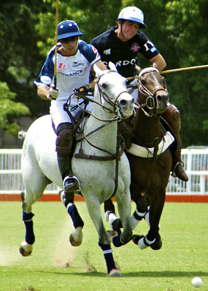 Victoria Melbourne Albert Park Polo Horse Horses Horse & Rider Fast-Paced Sport Spectacular