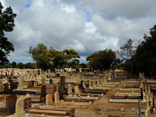 walks in the, in adelaide, australian history, about adelaide city, walking trails, the history of adelaide, guide to adelaide, west terrace cemetery