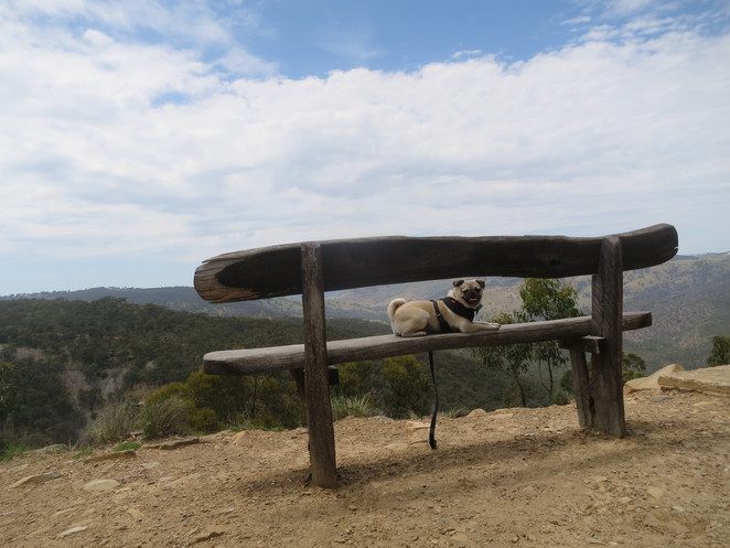 beaufoy merlin lookout, merlins lookout, hill end, hill end historic village, lookout, view, free, new south wales, sydney, road trip, day trip, 4wd, 2wd, dog friendly, hiking, viewpoint, observation deck