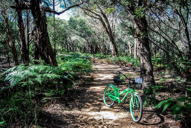 Bike ride, beaches, Couran Cove Island Resort, South Stradbroke Island, day trip, resort, activities, adventure