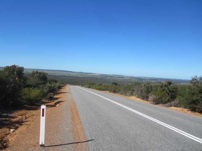 I would never have been able to absorb the beauty of the true Western Australian Setting while in a car! The landscape stretched for miles, not to mention the road as well!