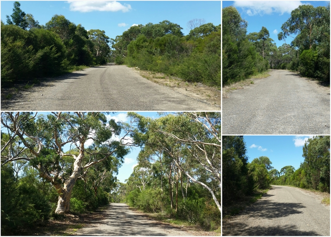 dharawal national park, trail to o'hares creek lookout