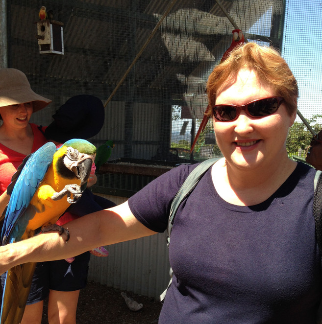 Maleny, Gardens, Gardening, Wildlife, Animals, Birds, Family, Weddings