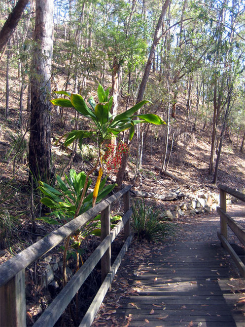 Milne Hill Reserve