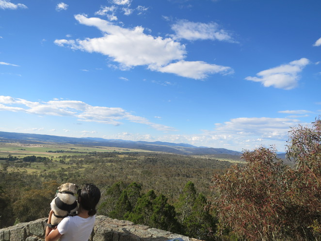 mt gladstone lookout, viewing platform, free, scenic, bushwalk, nanny goat hill lookout, cooma, new south wales, snowy mountains, high country, travel, lookout, art, street art, town, new south wales country