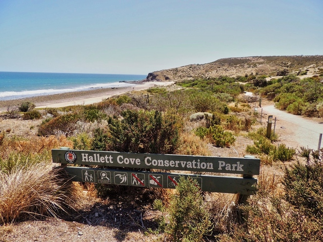 nature play, nature play sa, hallett cove conservation park, activities for kids, free things to do, hallett cove, walking trails, free event, native wildlife, heron way