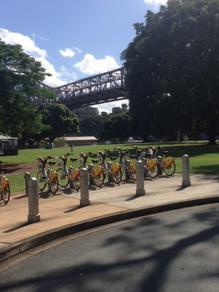 retro rides. State Library of Queensland, SLQ, Newstead, New Farm, Teneriffe, bikes, beer, retro, history, Woolshed