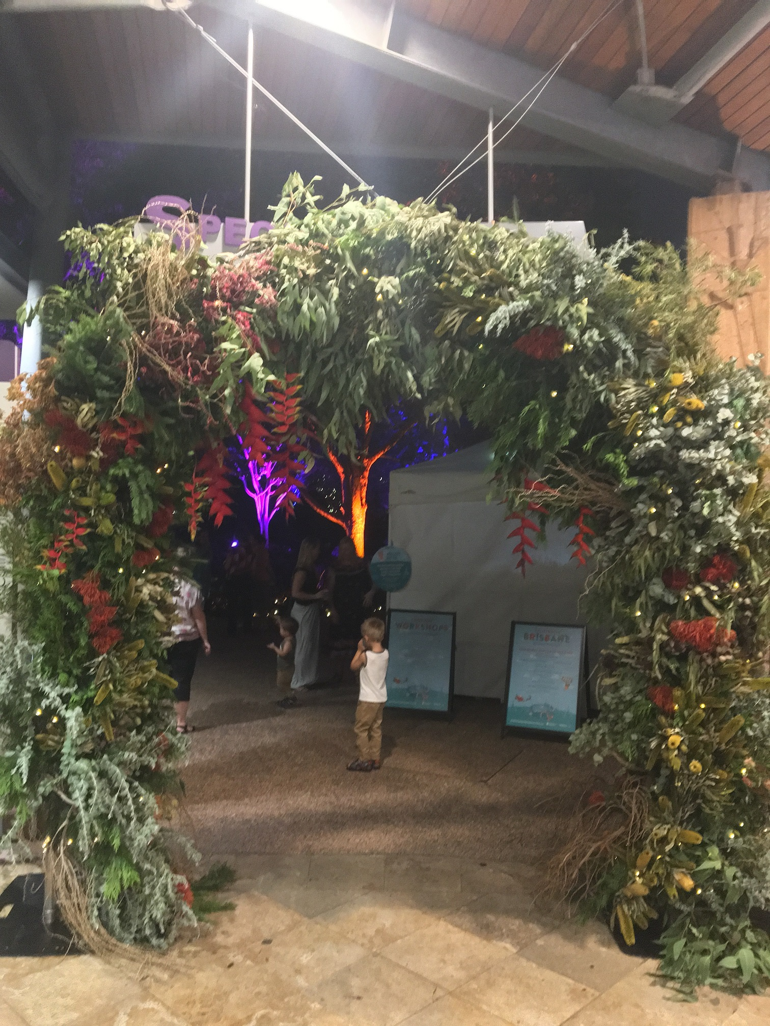 Enchanted Garden: Christmas Events At Roma Street Parklands