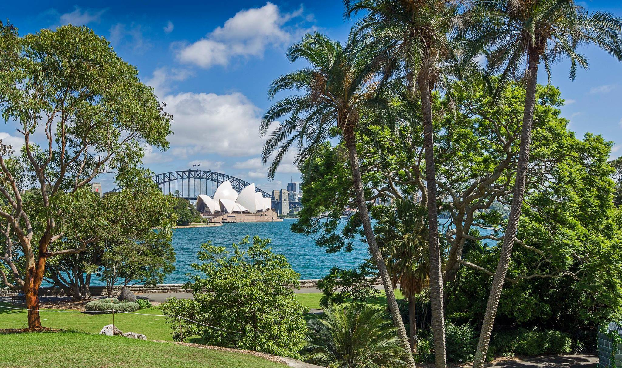 Top things to see do during vivid sydney sydney for Landscape gardeners sydney