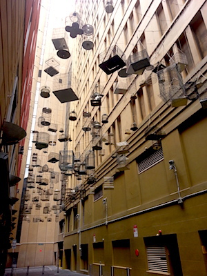 Sydney I m free tour, NSW, Australia, native bird song, audio art piece