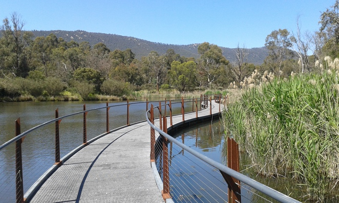 the sanctuary, tidbinbilla, canberra, school holidays, school holiday activities, wildlife, walks, kangaroos, koalas, platypus