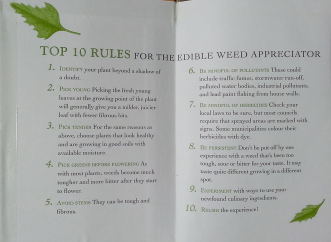 The Weed Foragers Handbook Rules, Adam Grubb, Annie Raser-Rowland