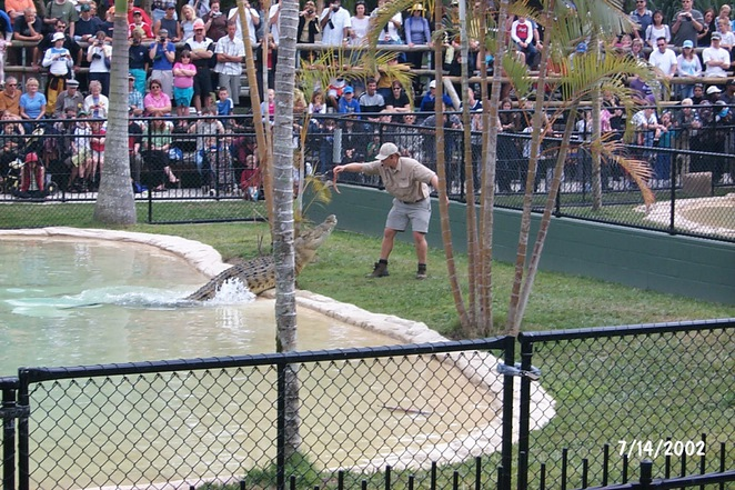 Theme Parks, Sunshine Coast, school holidays, annual passes, fun in the sun, aussie world, australia zoo, underwater world, dive with sharks, swim with seals, carousels, water rides, fun for the family