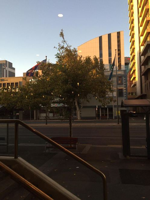 Adelaide, Restaurants, Coal Cellar and Grill, Charcoal, Hilton, The Hilton, Food, Adelaide City