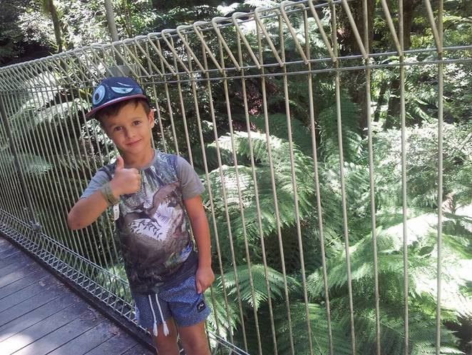 Bushwalk, nature walk, tarra bulga, water, kids