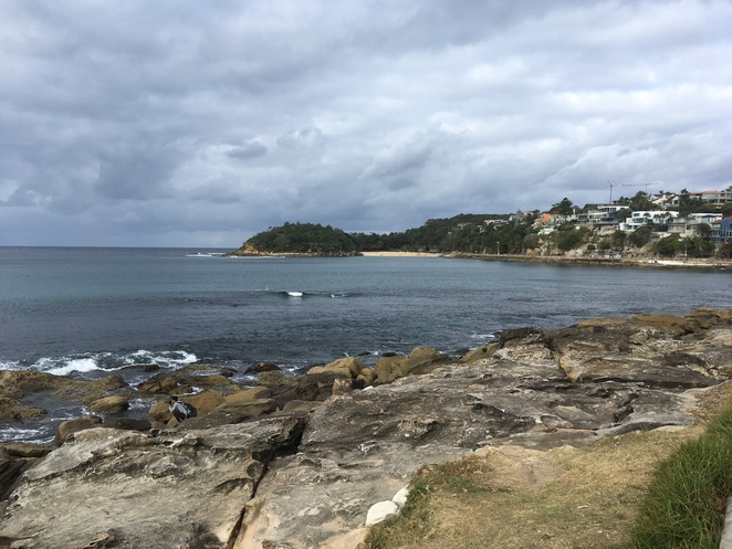 cabbage tree bay coastal walk, manly walks