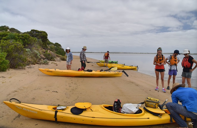 Canoe the Coorong, Younghusband, Murray Mouth, Ocean Beach, Bushtucker, Mundoo Channel, Barkers Knoll, Coorong, Things to do in Goolwa, Things to do at Goolwa