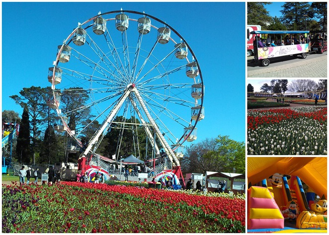 floriade, canberra, family friendly events, festivals, floriade, 2017, 2018,