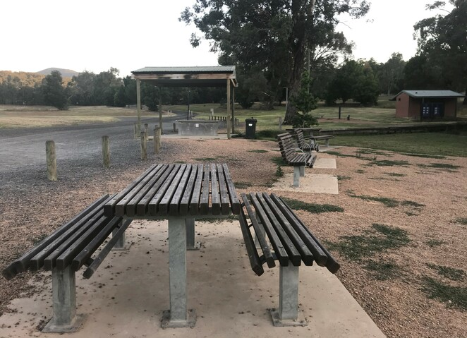free, dog friendly park, walks, healesville, picnic, bbq, off lead, don road sporting complex, yarra valley, walks, tracks, views, feed the ducks, family friendly