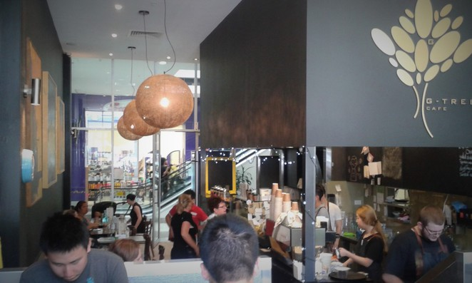 g tree cafe, canberra, gungahlin, ACT, breakfast, lunch, coffee, ona,