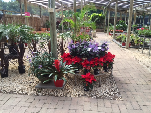 Garden Centre, Plant Nursery, plants, mulching, pot plants, water features, flowers, colours