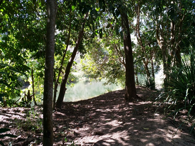 View from the Jann McArthur Track on the way to Bunya Crossing Reserve