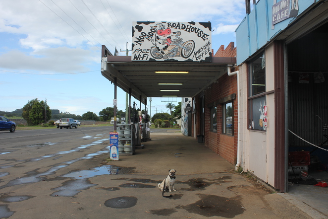 moo moo roadhouse, mooball, new south wales, gold coast, brisbane, big things, big motorcycle, dog friendly, lookout, cafe, restaurant, food, coffee, steak, tweed valley