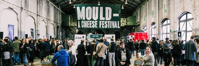 Mould,a,cheese,Festival