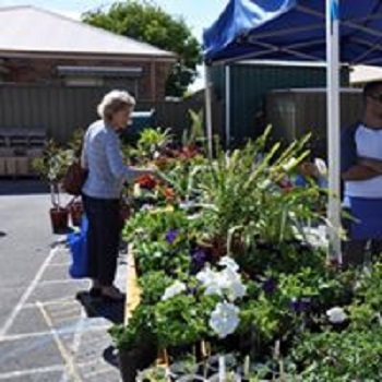 spring fete, plant sales, market stalls, children's games, auctions, food and wine