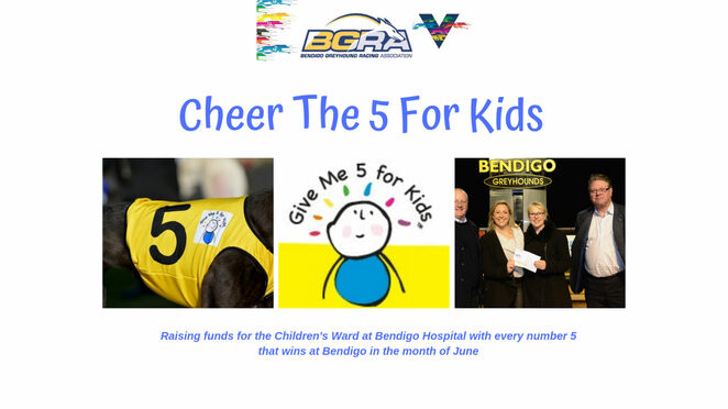 superheroes race day 2019, bendigo greyhounds, community event, fun things to do, free entry, fundraising event, fundraiser, charity, faily fun, givbe me 5 for kids, triple m bendigo cup, free showbag, free kids meals, superheroes, magic shows, face painting, jumping castle, kids activities, new playground, prizes, a day at the dogs, punters club, bendigo cup heats, food and beverage